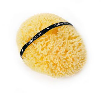 Naturalna gąbka morska - honeycomb - KING SIZE Lullalove